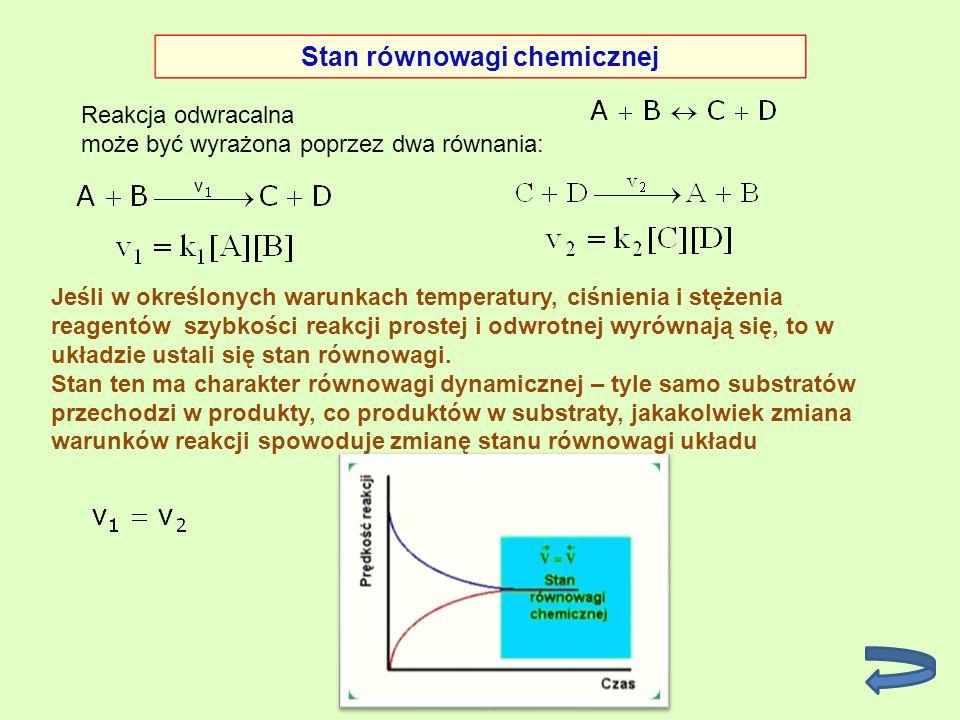 Stan równowagi chemicznej