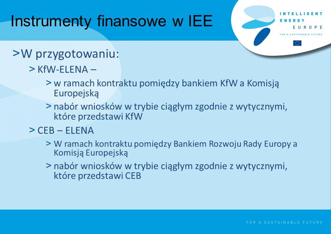 Instrumenty finansowe w IEE