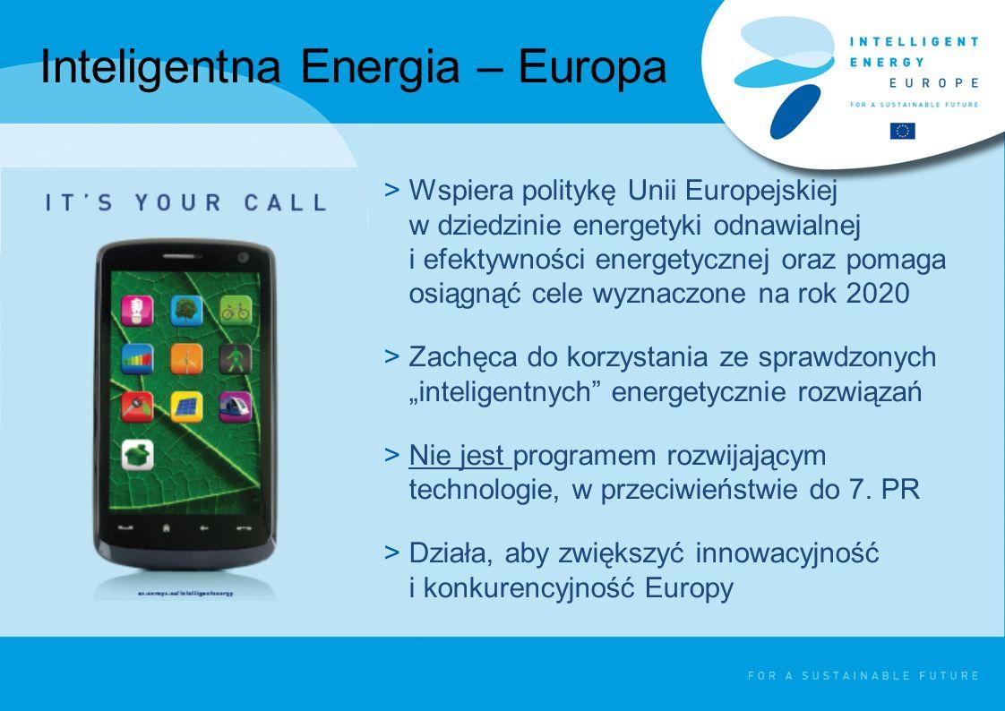 Inteligentna Energia – Europa