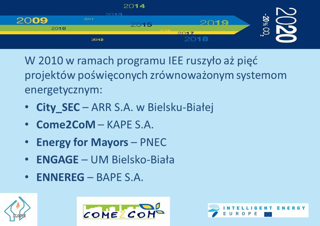 W 2010 w ramach programu IEE ruszyło aż pięć projektów poświęconych zrównoważonym systemom energetycznym: