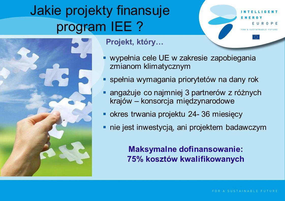 Jakie projekty finansuje program IEE