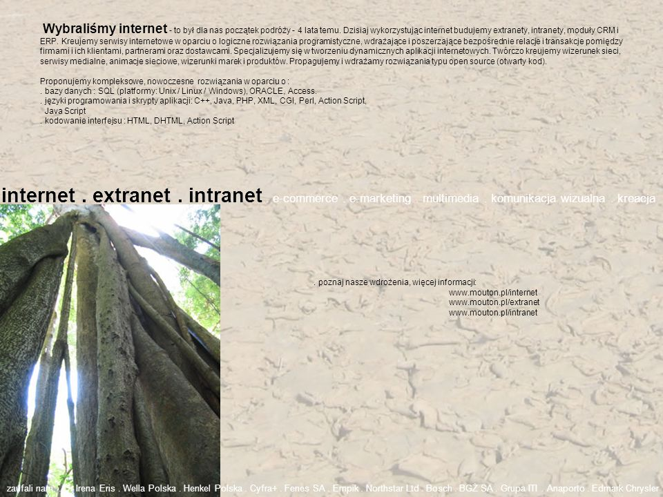 internet . extranet . intranet