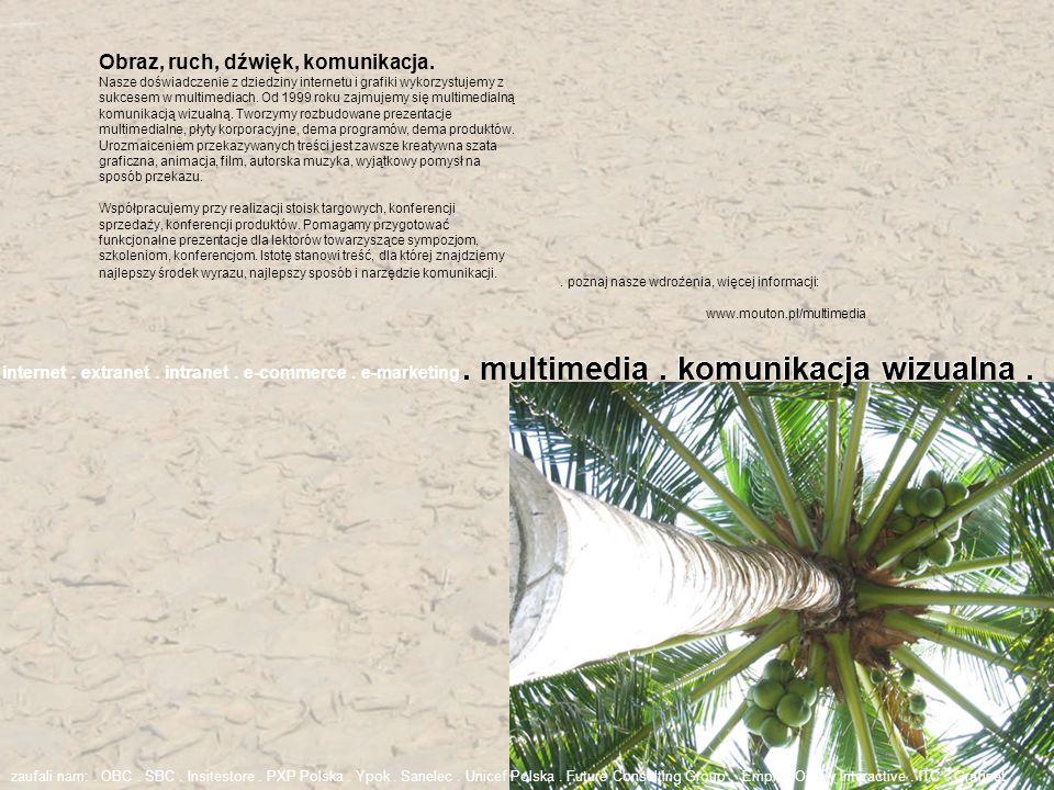 . multimedia . komunikacja wizualna .