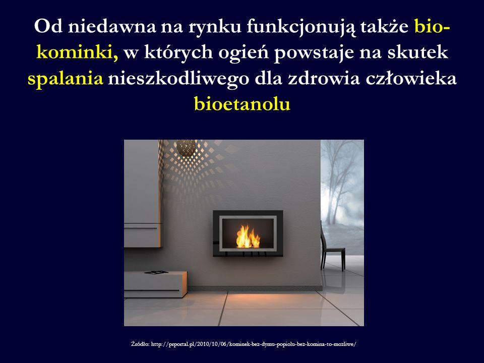 Od niedawna na rynku funkcjonują także bio-kominki, w których ogień powstaje na skutek spalania nieszkodliwego dla zdrowia człowieka bioetanolu