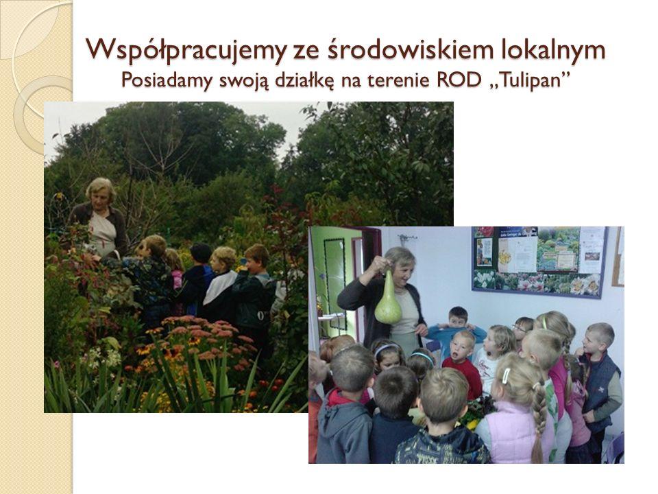 """Współpracujemy ze środowiskiem lokalnym Posiadamy swoją działkę na terenie ROD """"Tulipan"""