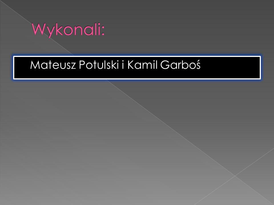 Wykonali: Mateusz Potulski i Kamil Garboś