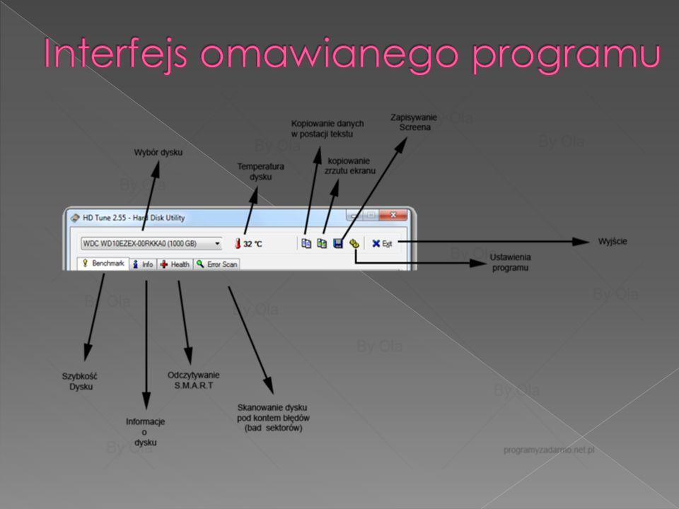 Interfejs omawianego programu