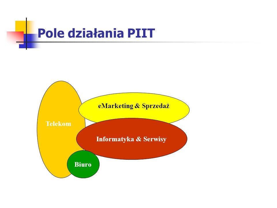Pole działania PIIT eMarketing & Sprzedaż Telekom Media (279)