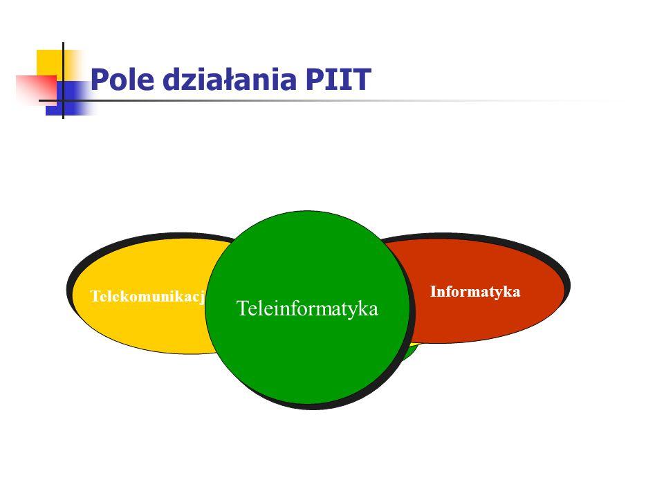 Pole działania PIIT Teleinformatyka Informatyka eMarketing & Sprzedaż