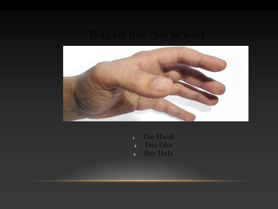 Was ist das (co to jest) Die Hand Das Ohr Der Hals