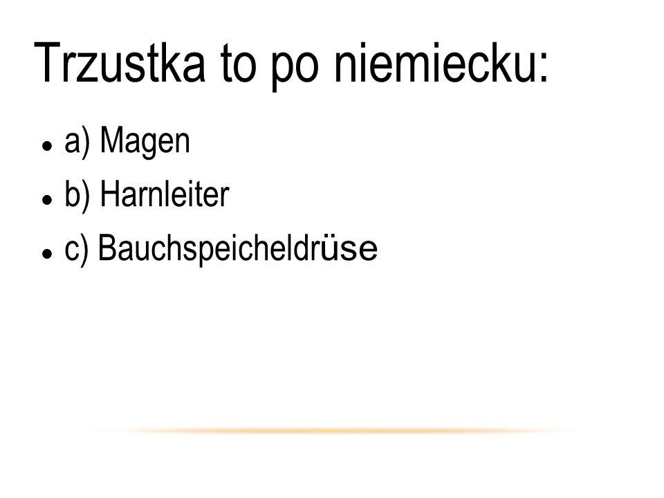 Trzustka to po niemiecku: