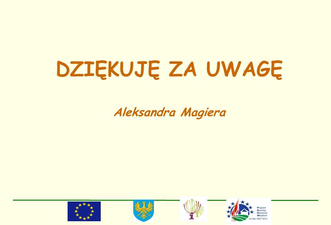 DZIĘKUJĘ ZA UWAGĘ Aleksandra Magiera