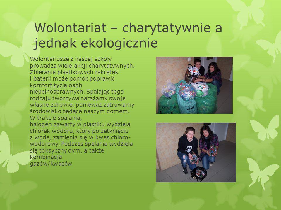 Wolontariat – charytatywnie a jednak ekologicznie