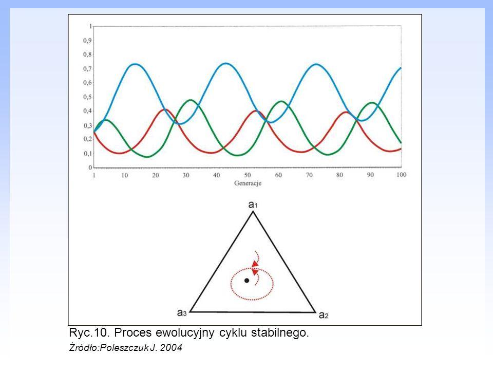 Ryc.10. Proces ewolucyjny cyklu stabilnego.