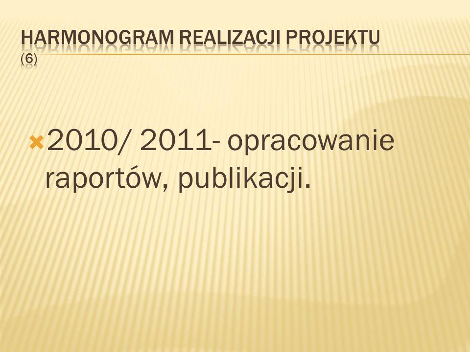 Harmonogram realizacji projektu (6)