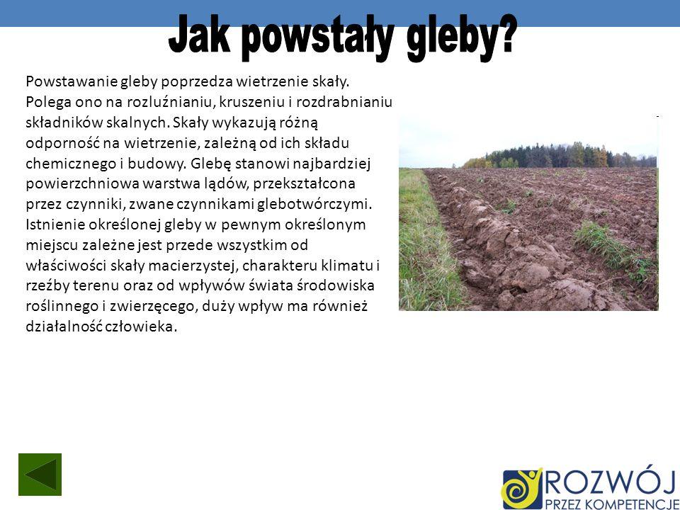 Jak powstały gleby