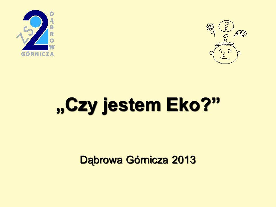 """""""Czy jestem Eko Dąbrowa Górnicza 2013"""
