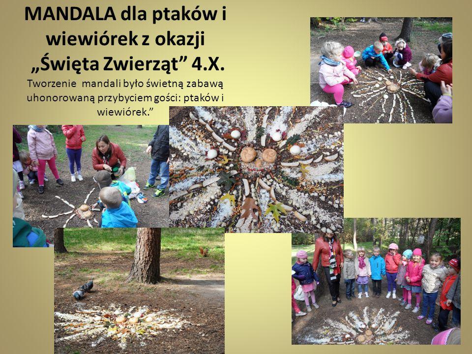 """MANDALA dla ptaków i wiewiórek z okazji """"Święta Zwierząt 4. X"""