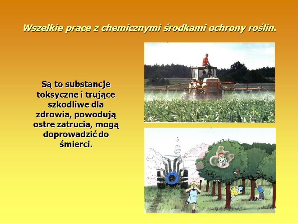 Wszelkie prace z chemicznymi środkami ochrony roślin.