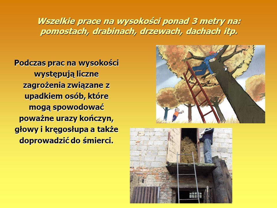 Wszelkie prace na wysokości ponad 3 metry na: pomostach, drabinach, drzewach, dachach itp.