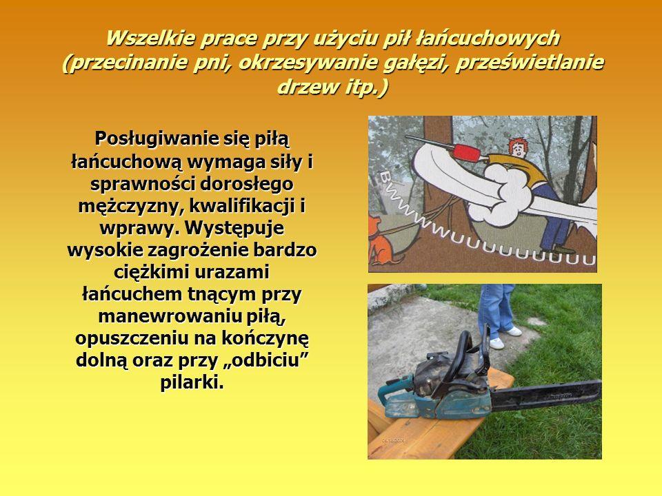Wszelkie prace przy użyciu pił łańcuchowych (przecinanie pni, okrzesywanie gałęzi, prześwietlanie drzew itp.)