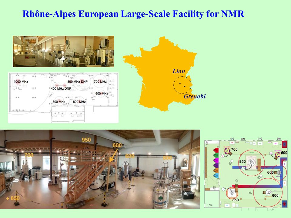 Rhône-Alpes European Large-Scale Facility for NMR