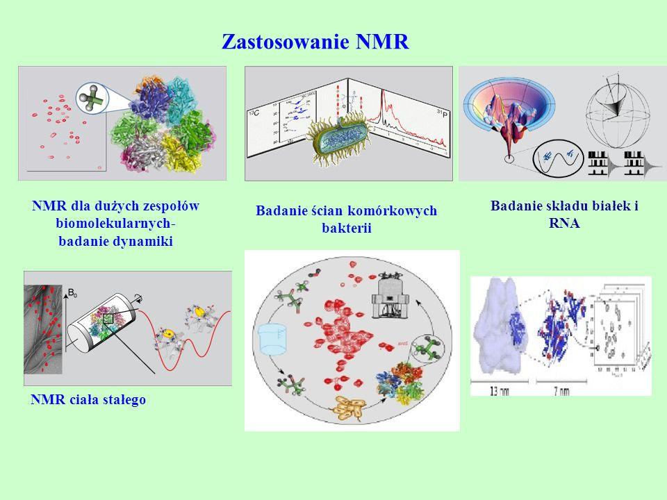 Zastosowanie NMR NMR dla dużych zespołów biomolekularnych- badanie dynamiki. Badanie składu białek i RNA.