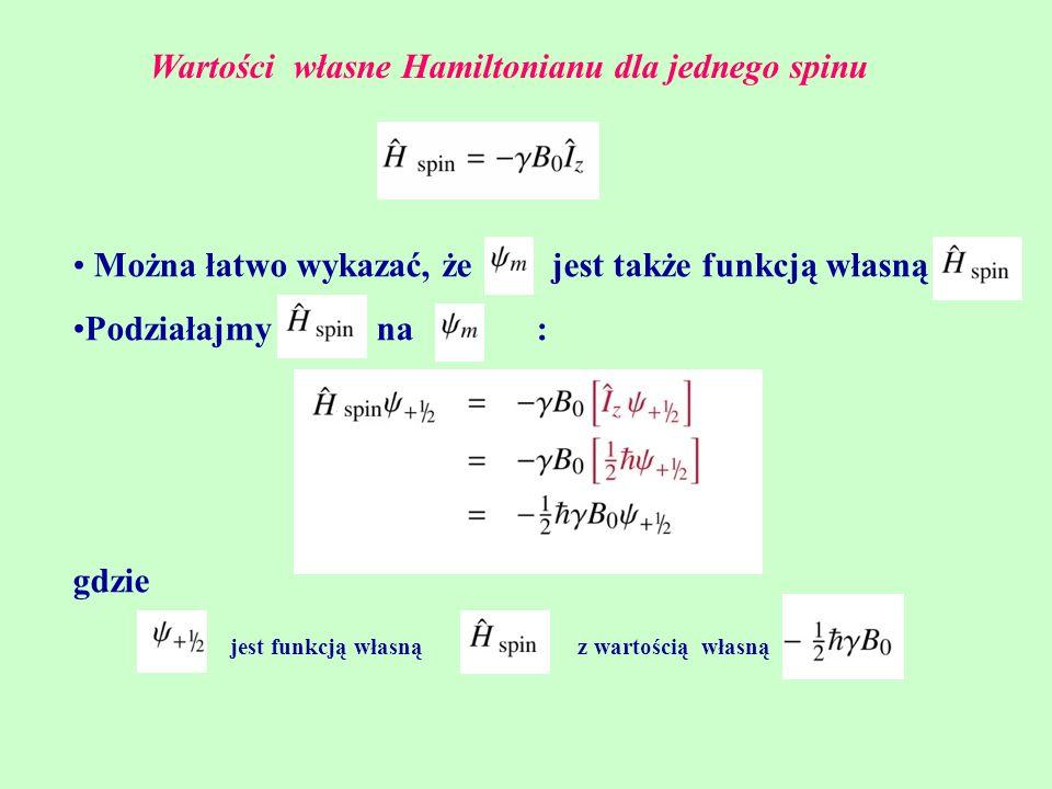 Wartości własne Hamiltonianu dla jednego spinu
