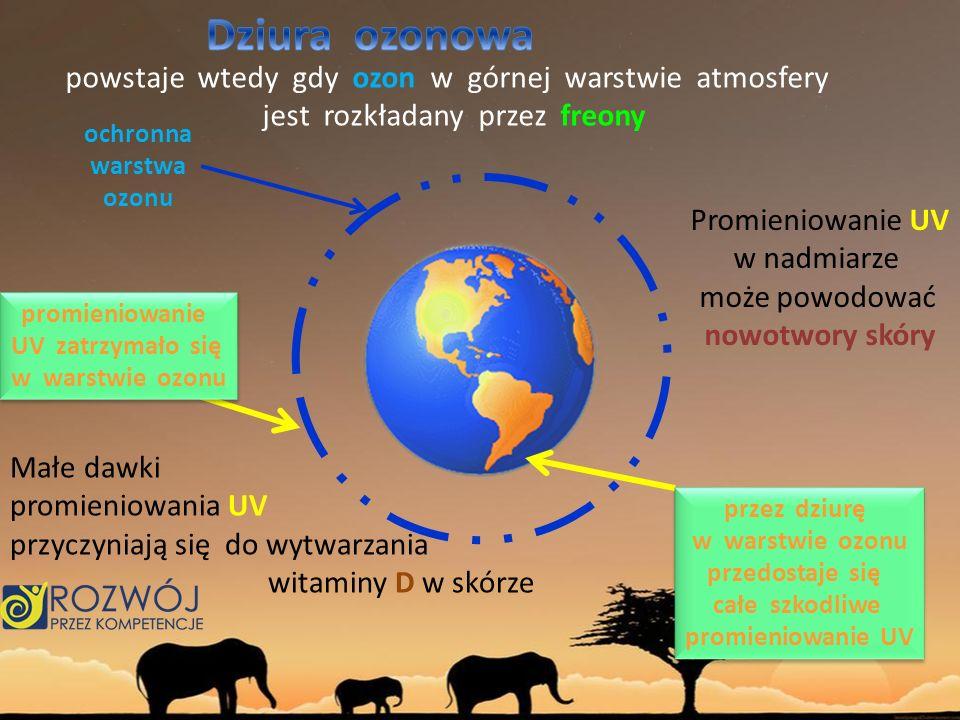 Dziura ozonowa powstaje wtedy gdy ozon w górnej warstwie atmosfery
