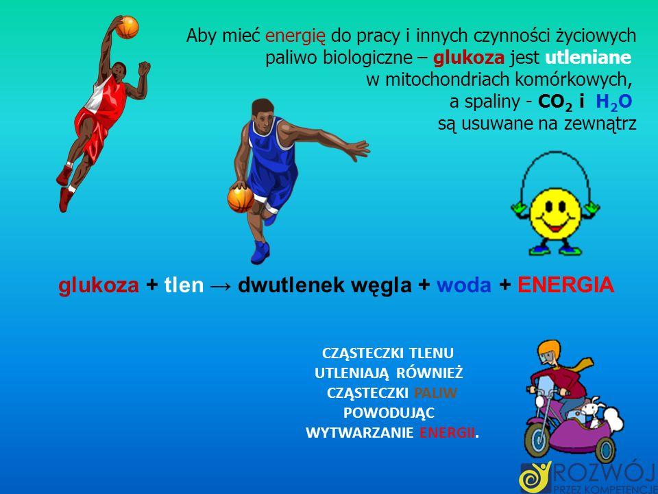glukoza + tlen → dwutlenek węgla + woda + ENERGIA
