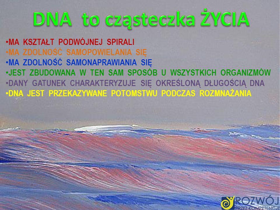 DNA to cząsteczka ŻYCIA