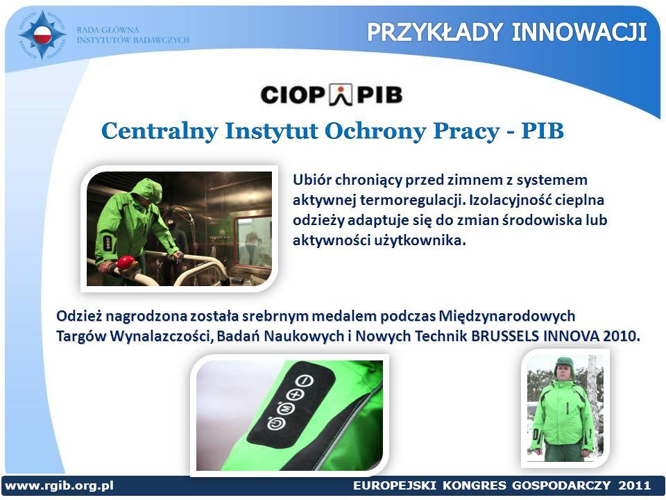 Centralny Instytut Ochrony Pracy - PIB