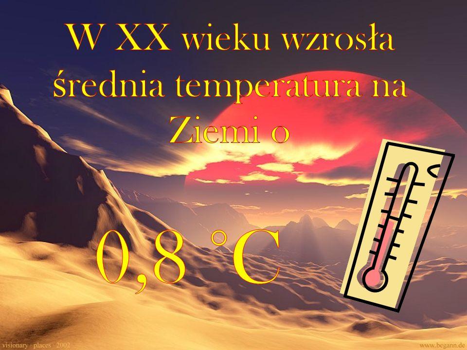 W XX wieku wzrosła średnia temperatura na Ziemi o