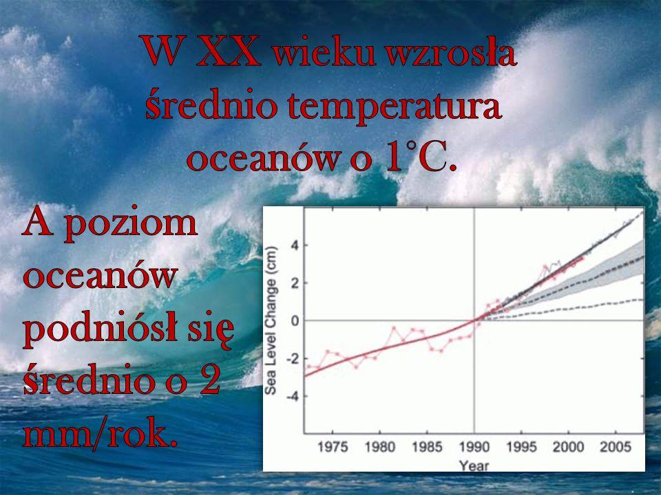 W XX wieku wzrosła średnio temperatura oceanów o 1°C.