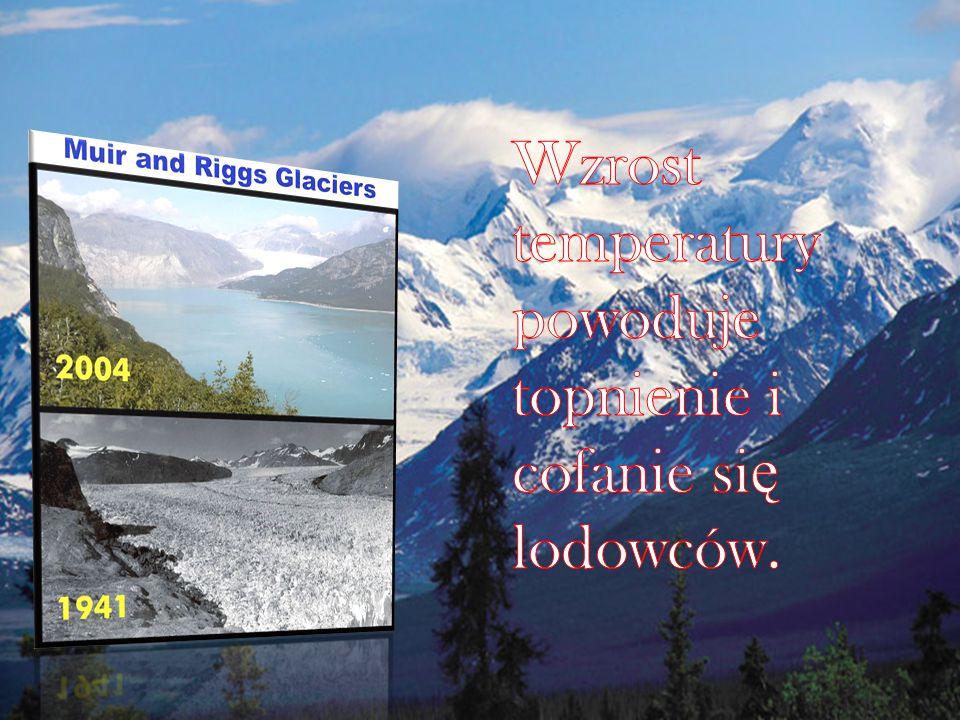 Wzrost temperatury powoduje topnienie i cofanie się lodowców.