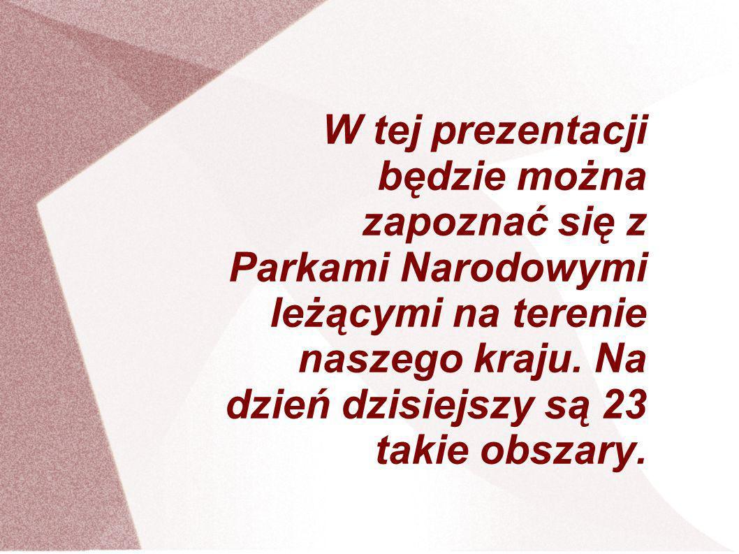 W tej prezentacji będzie można zapoznać się z Parkami Narodowymi leżącymi na terenie naszego kraju.