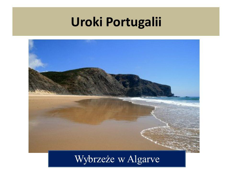 Uroki Portugalii Wybrzeże w Algarve