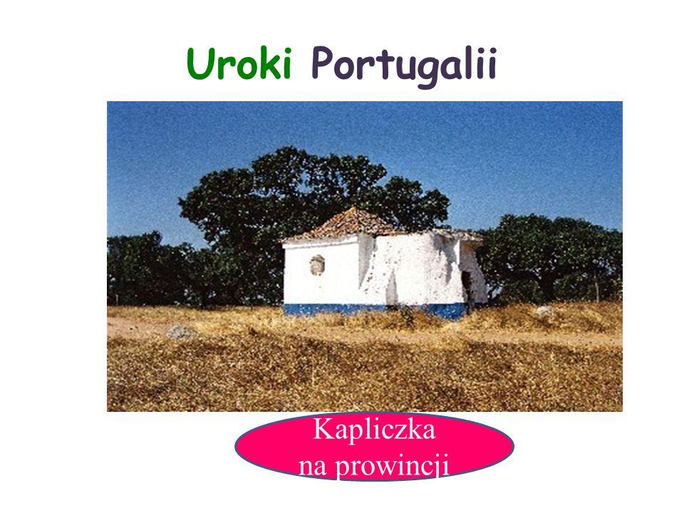 Uroki Portugalii Kapliczka na prowincji