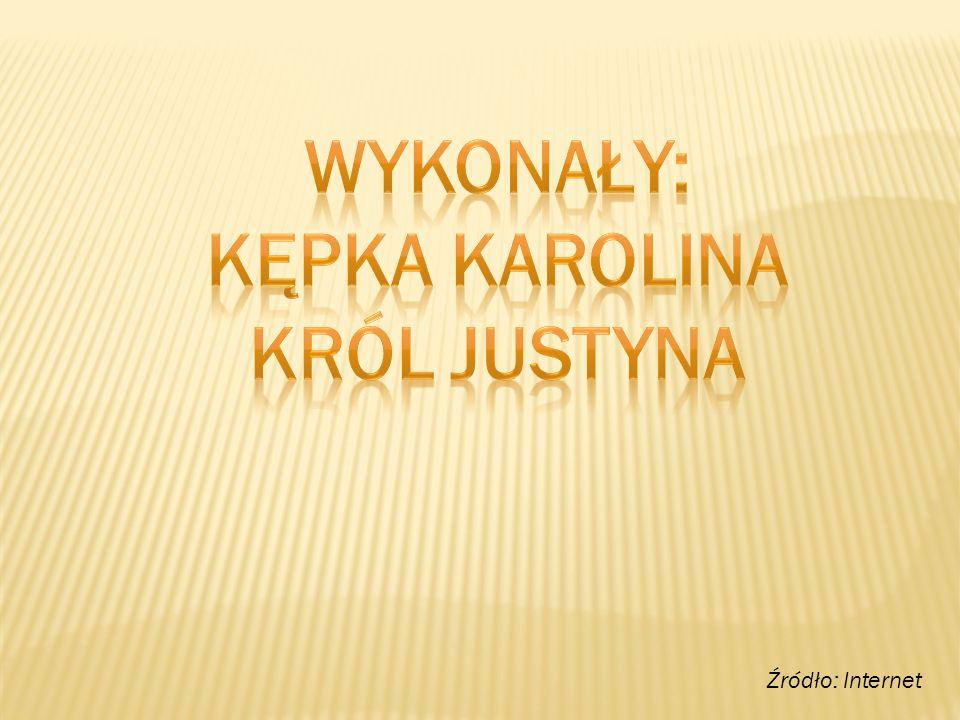WYKONAŁY: Kępka Karolina Król Justyna