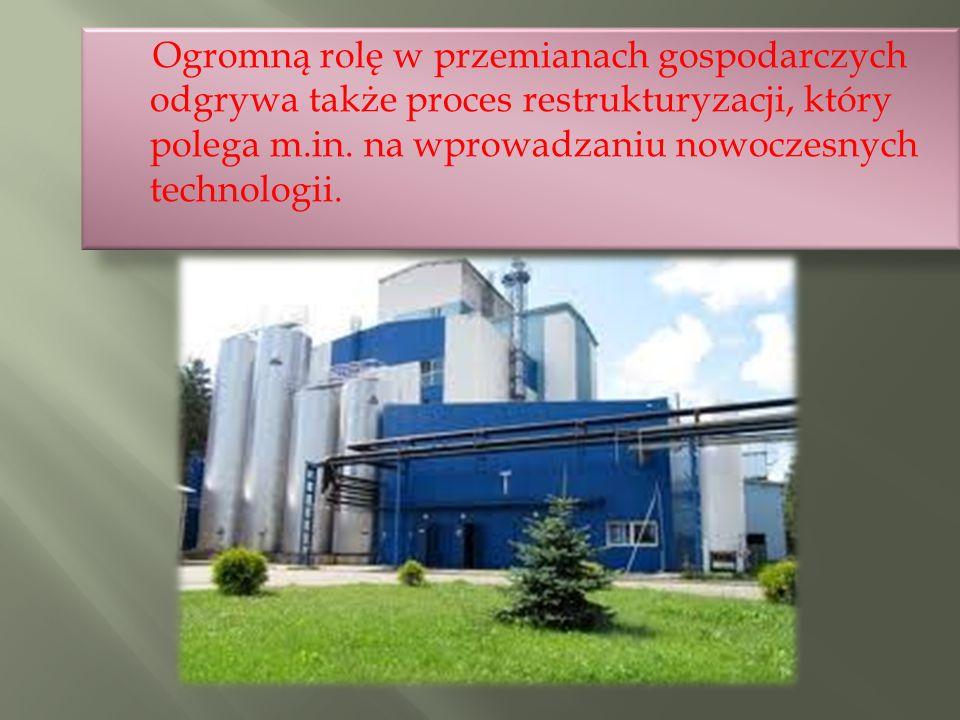 Ogromną rolę w przemianach gospodarczych odgrywa także proces restrukturyzacji, który polega m.in.