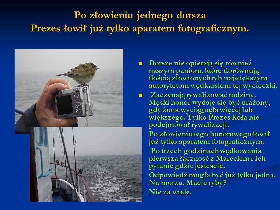 Po złowieniu jednego dorsza Prezes łowił już tylko aparatem fotograficznym.