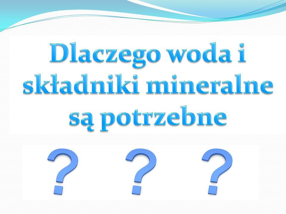 Dlaczego woda i składniki mineralne są potrzebne