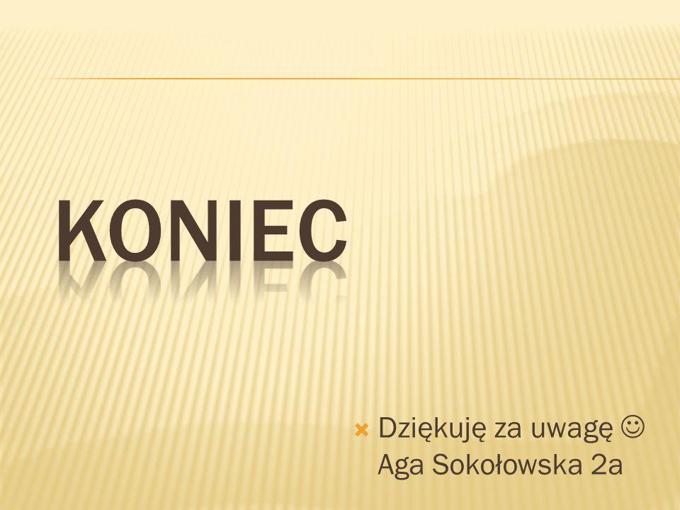 Koniec Dziękuję za uwagę  Aga Sokołowska 2a