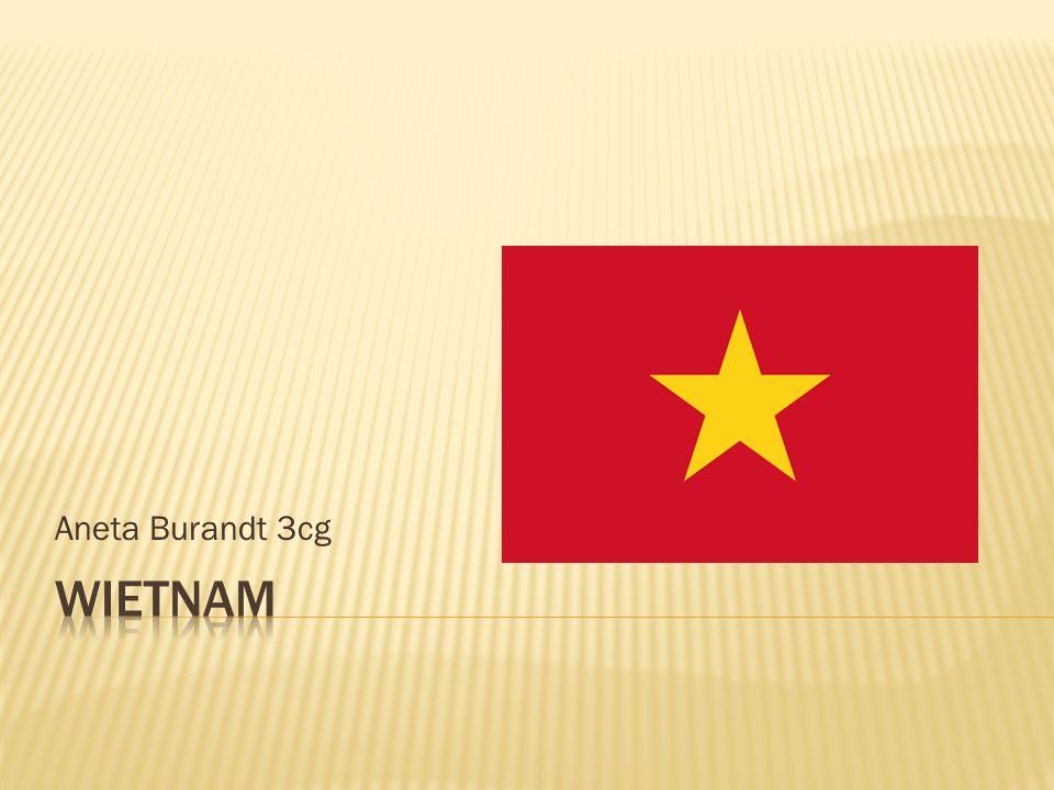 Aneta Burandt 3cg Wietnam