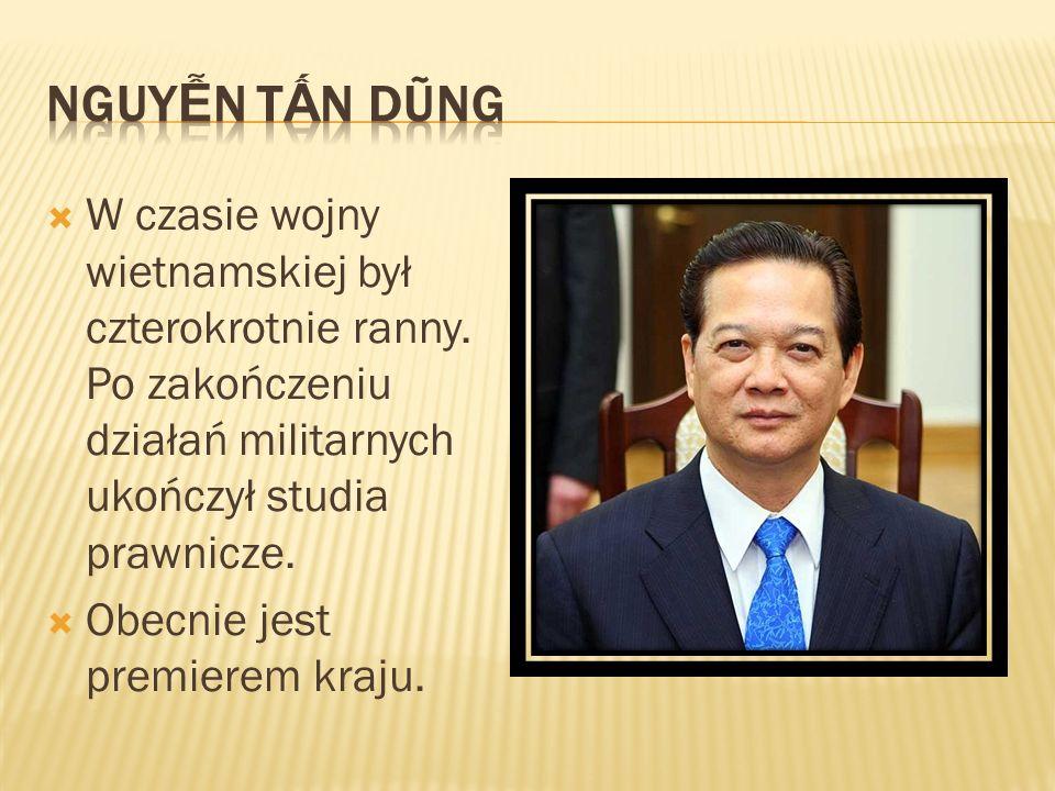 Nguyễn Tấn DũngW czasie wojny wietnamskiej był czterokrotnie ranny. Po zakończeniu działań militarnych ukończył studia prawnicze.