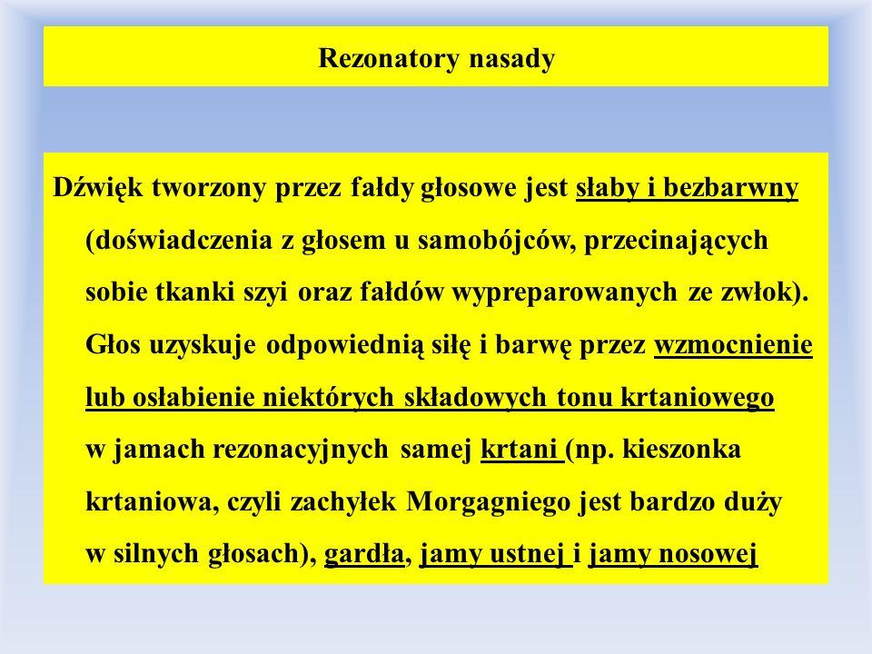 Rezonatory nasady