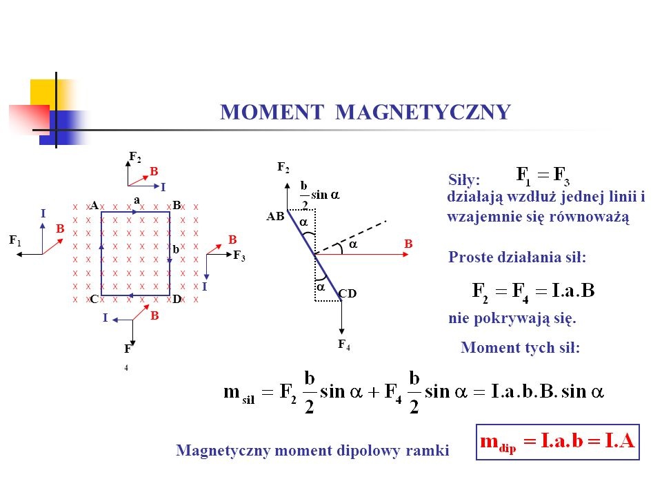 MOMENT MAGNETYCZNY Siły: