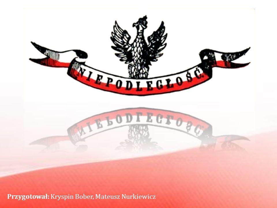 Przygotował: Kryspin Bober, Mateusz Nurkiewicz