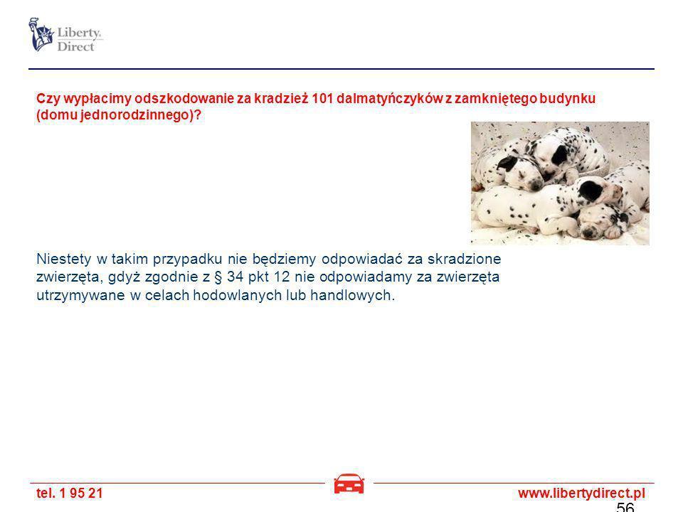 Czy wypłacimy odszkodowanie za kradzież 101 dalmatyńczyków z zamkniętego budynku (domu jednorodzinnego)