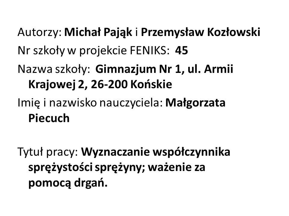 Autorzy: Michał Pająk i Przemysław Kozłowski